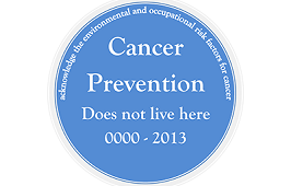 PINK TO PREVENTION: Cancer Prevention ~ A Toxic Tour ~
