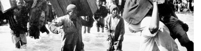 Make Apartheid History joins with all those marking 2016 NAKBAactivities