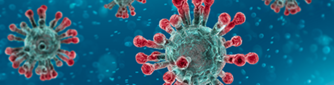 In times of Coronavirus: UBI is an idea whose time has finally come